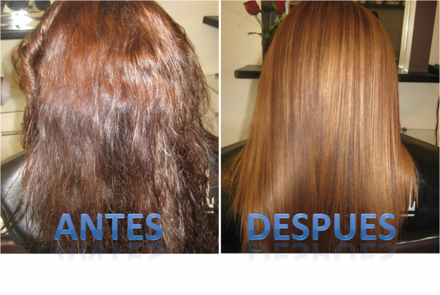 El aceite que restablece para los cabellos de los sauces roshe